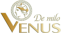 Đèn Trang Trí Khang Dy Venus